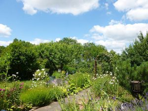 Kleingartenanlage Coburg Am Bausenberg